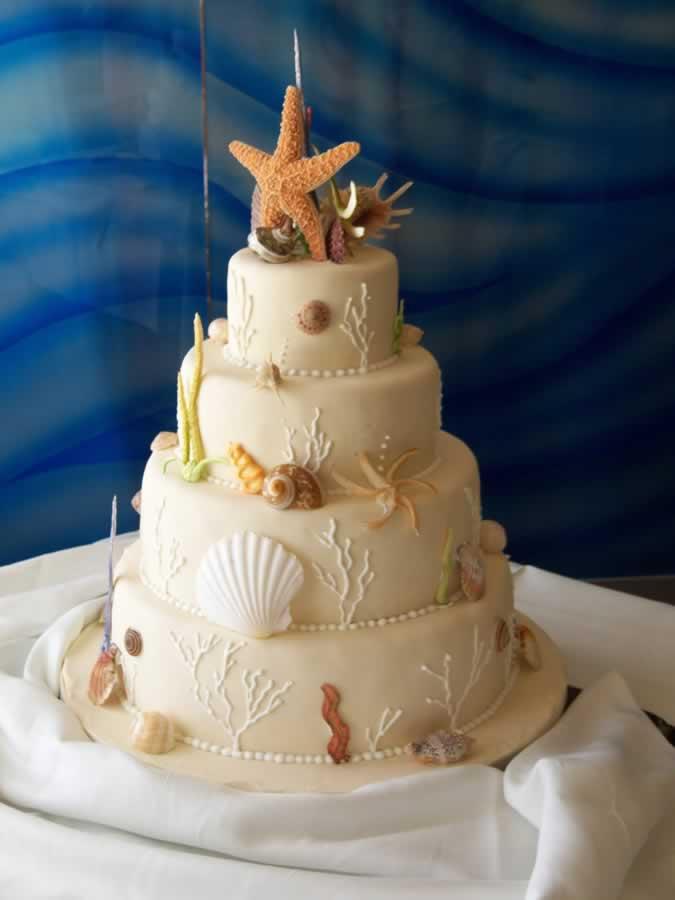 beige-shell-cake